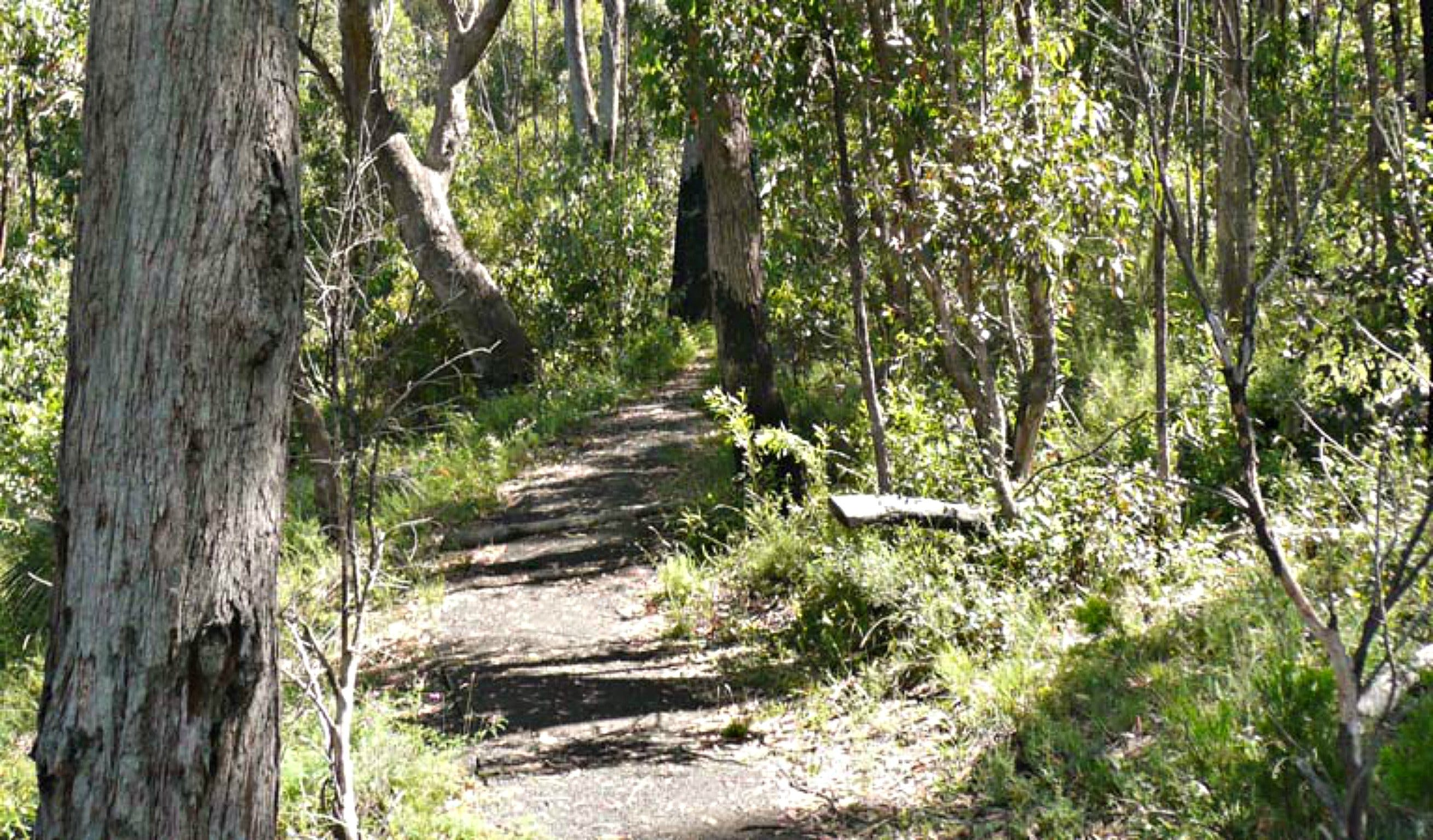 Euglah Rock Walking Track - Accommodation Sydney