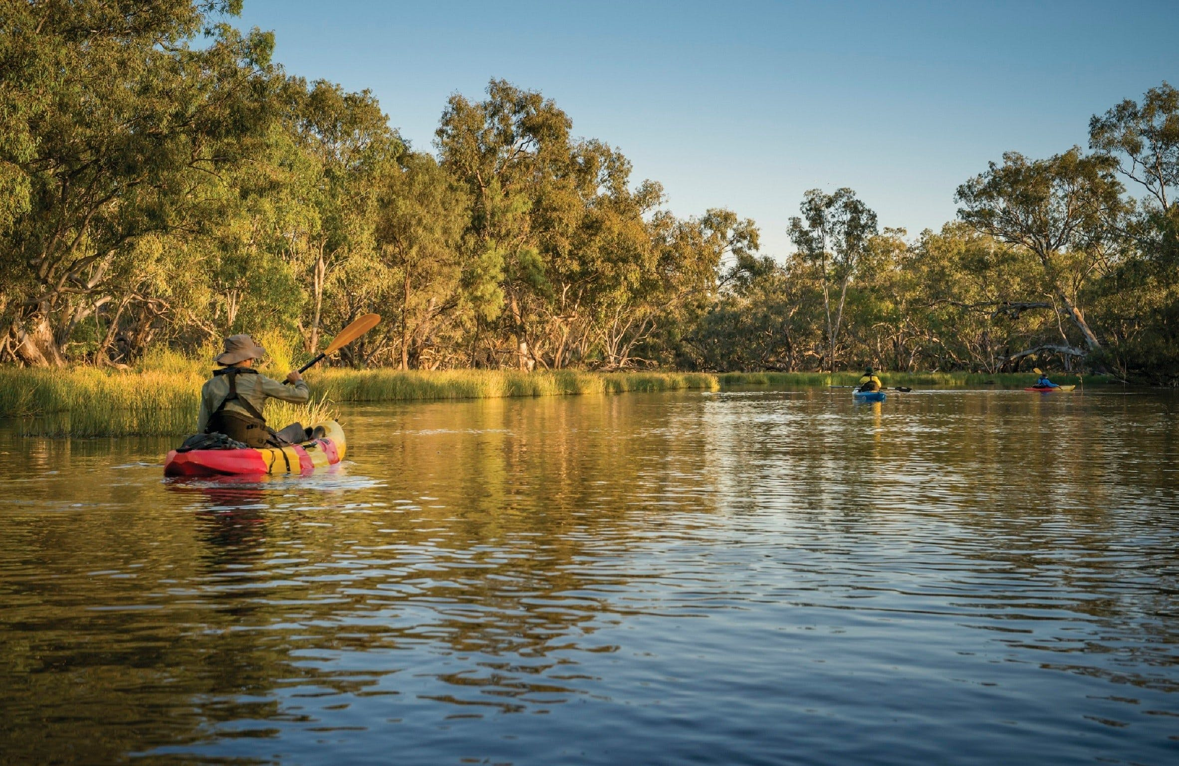 Macquarie Marshes Nature Reserve - Accommodation Sydney