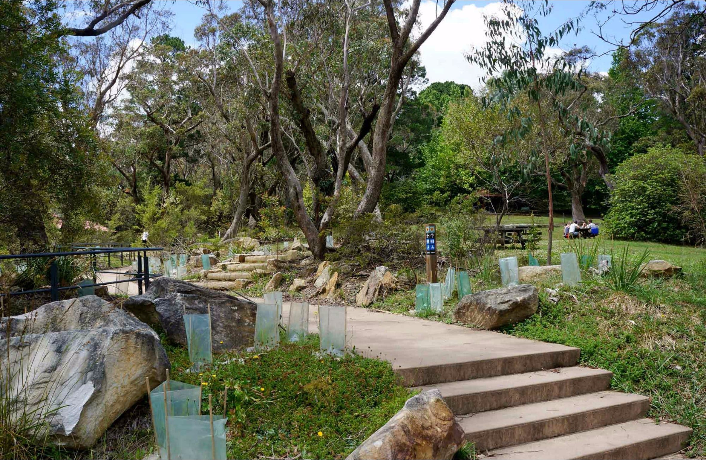 Wentworth Falls picnic area - Accommodation Sydney