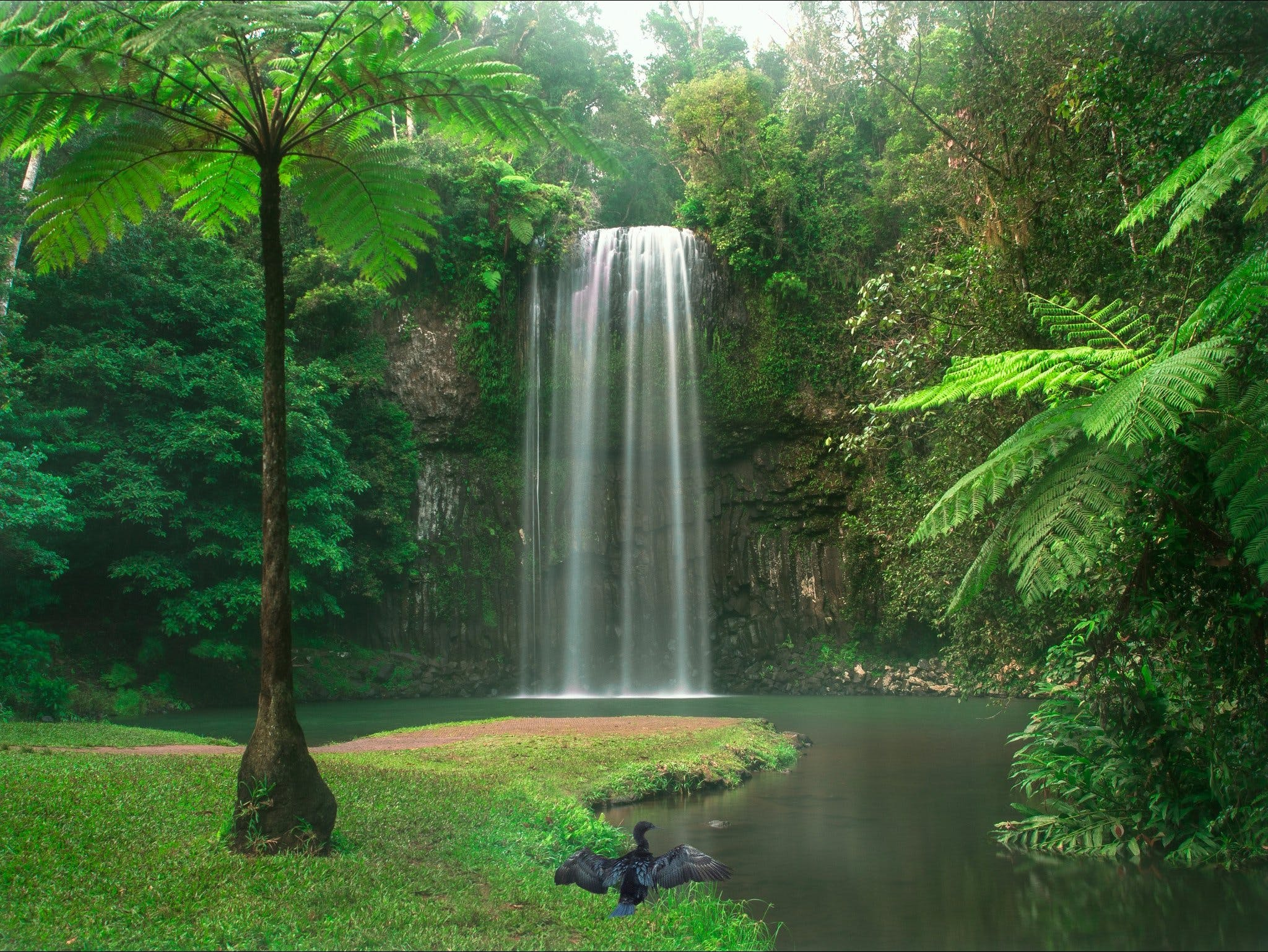 Atherton Tablelands - Accommodation Sydney