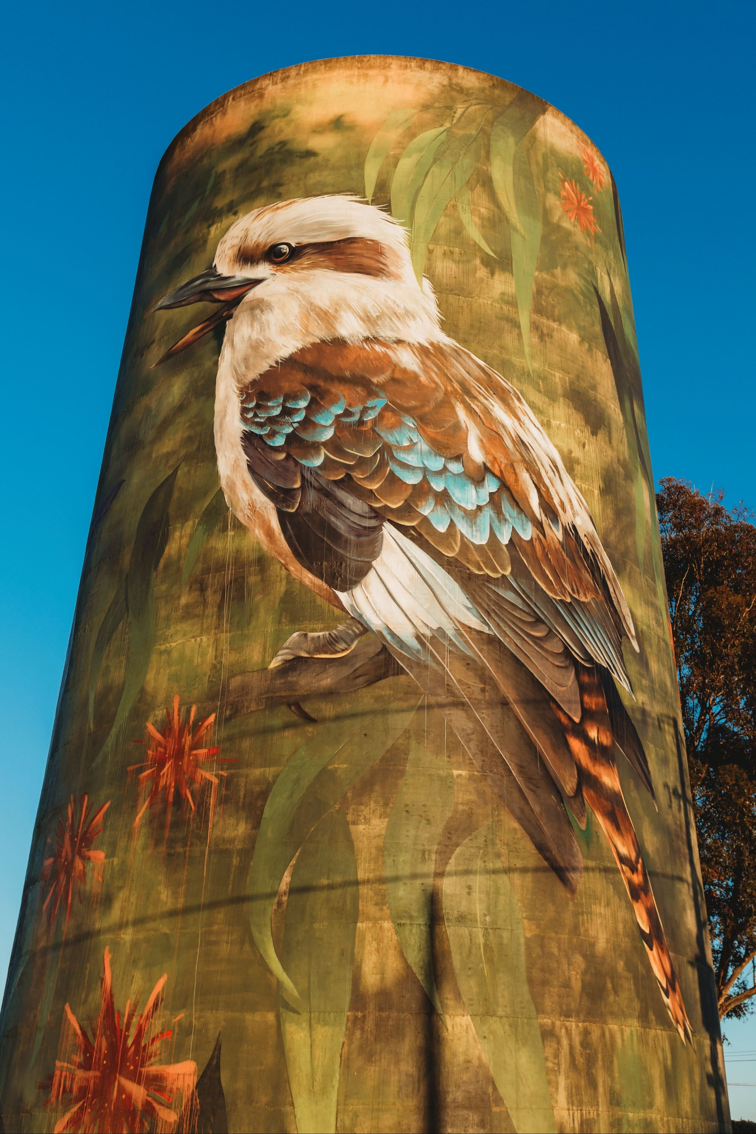 Deniliquin Water Tower Mural - Accommodation Sydney
