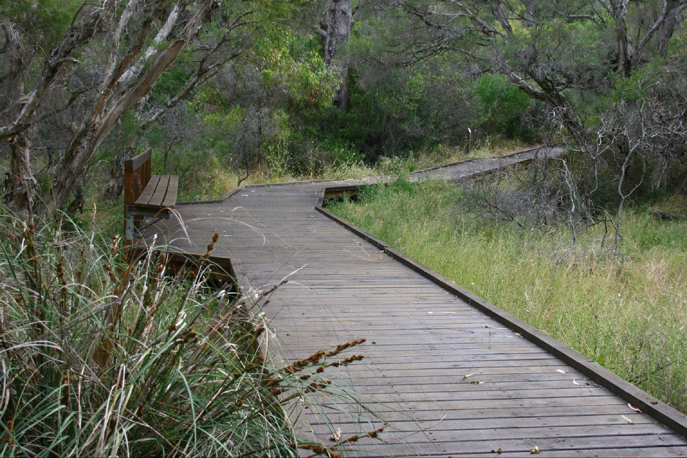 Leschenault Peninsula Conservation Park - Accommodation Sydney