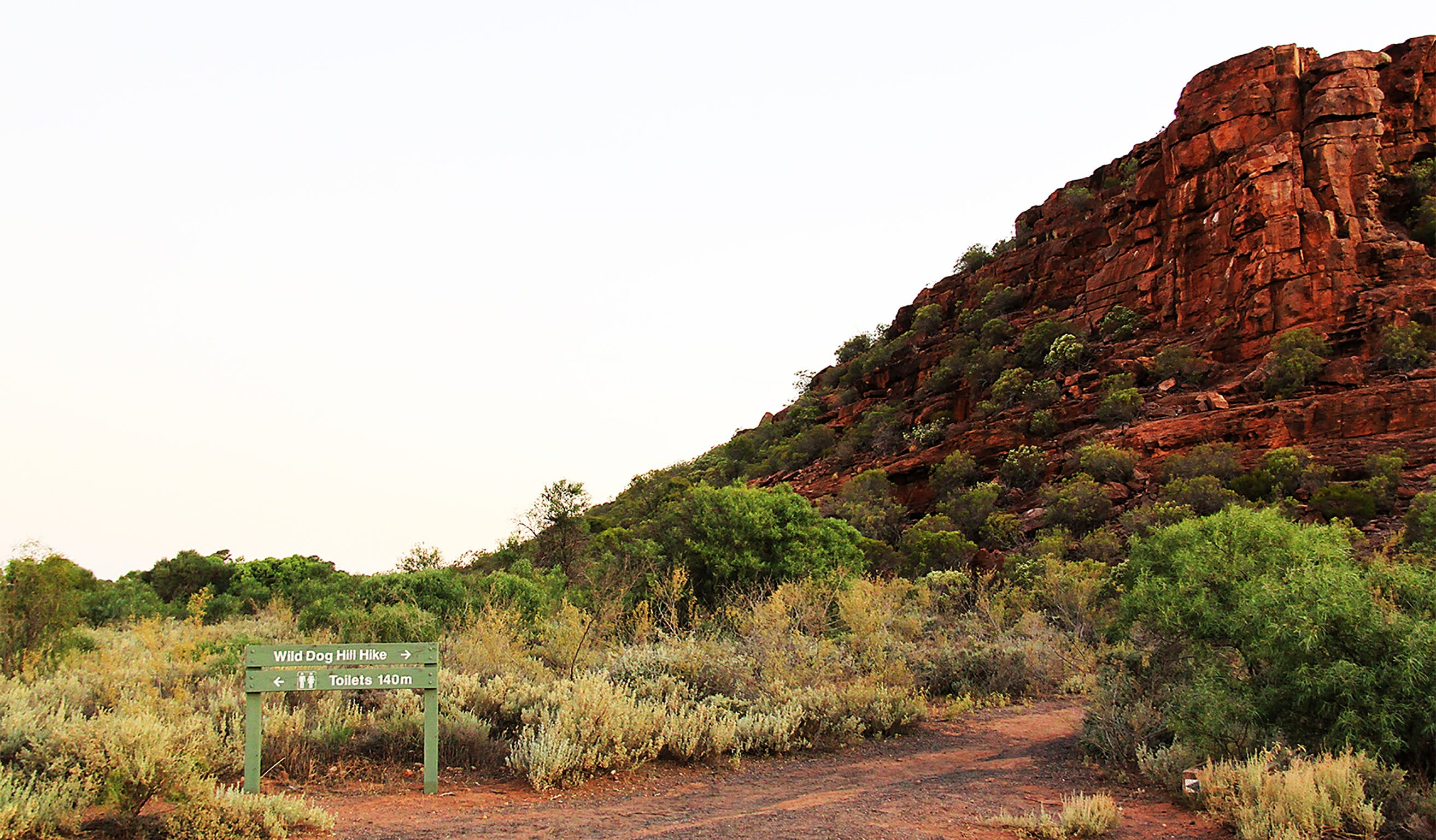 Whyalla Conservation Park - Accommodation Sydney