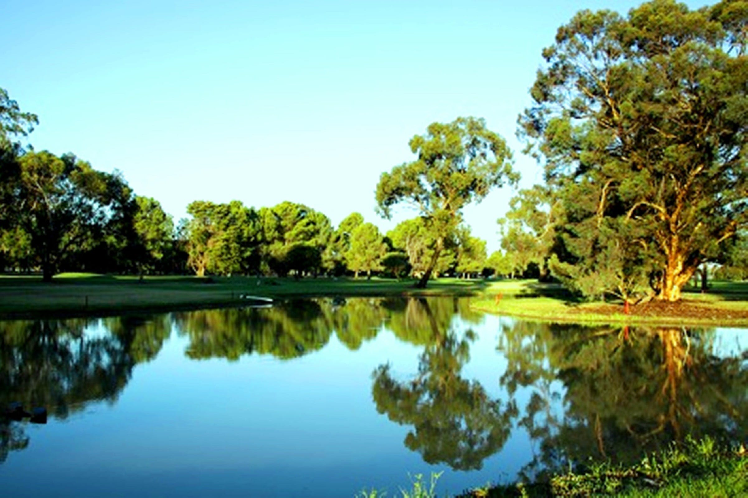 Finley Golf Club - Accommodation Sydney