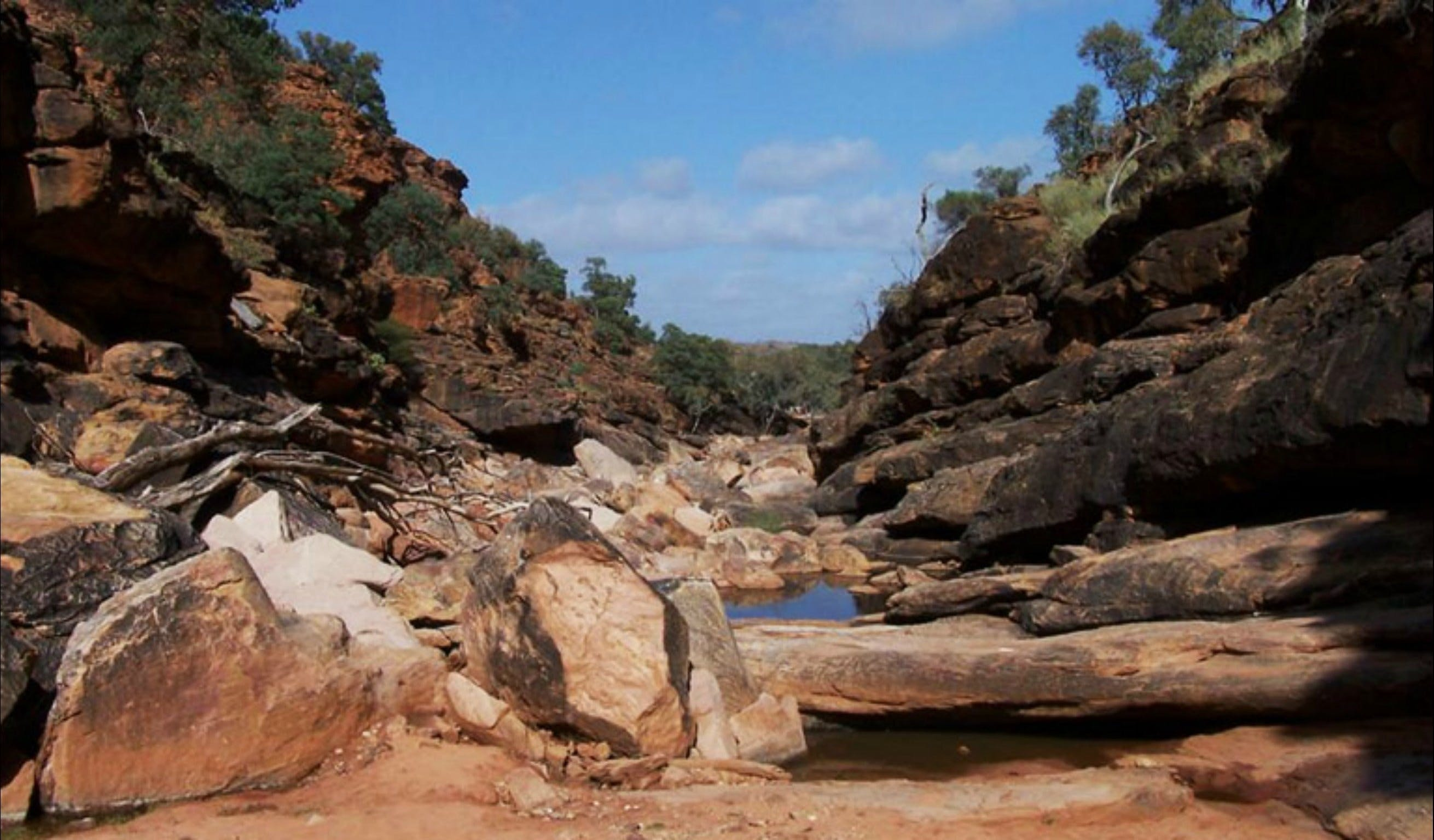 Homestead Gorge trail - Accommodation Sydney