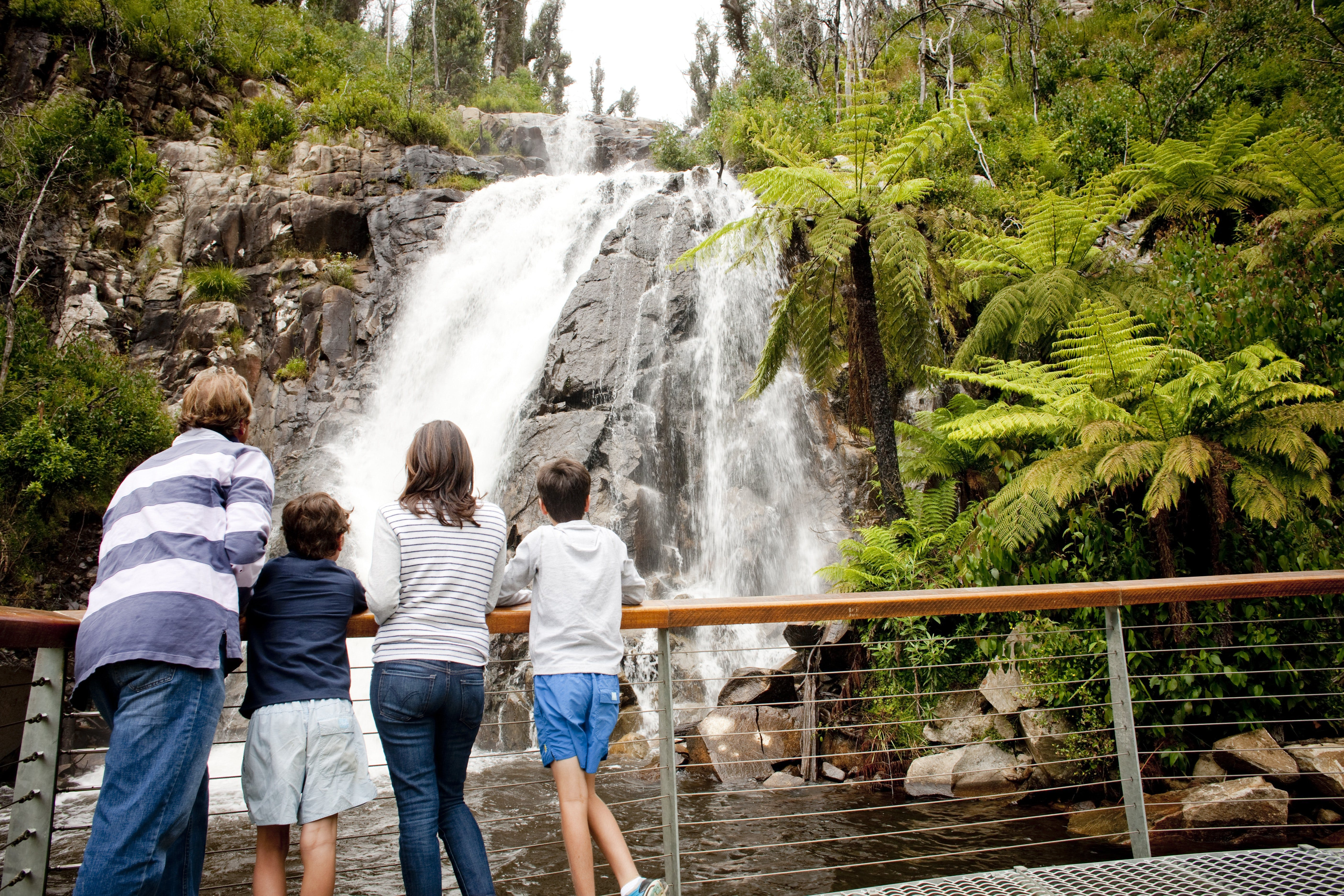 Steavenson Falls - Accommodation Sydney