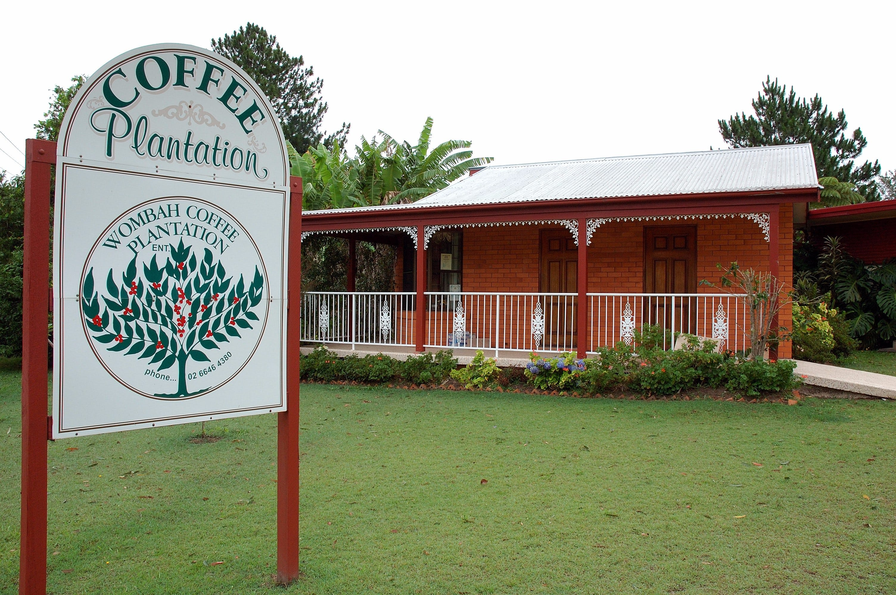 Wombah Coffee Plantation - Accommodation Sydney