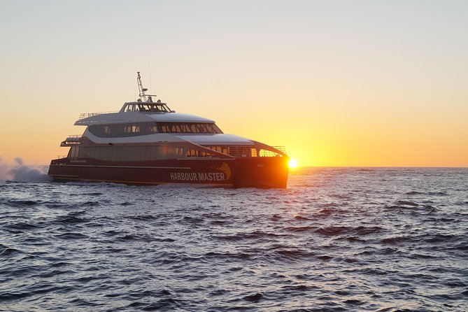 Afternoon Gordon River Dinner Cruise - departing 3pm - Accommodation Sydney
