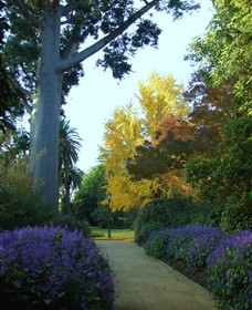 Albury Botanic Garden - Accommodation Sydney