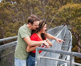 Valley of the Giants Tree Top Walk - Accommodation Sydney