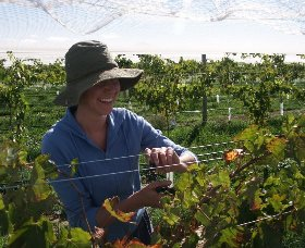 Kingsdale Wines - Accommodation Sydney