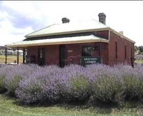Lavender House in Railway Park - Accommodation Sydney