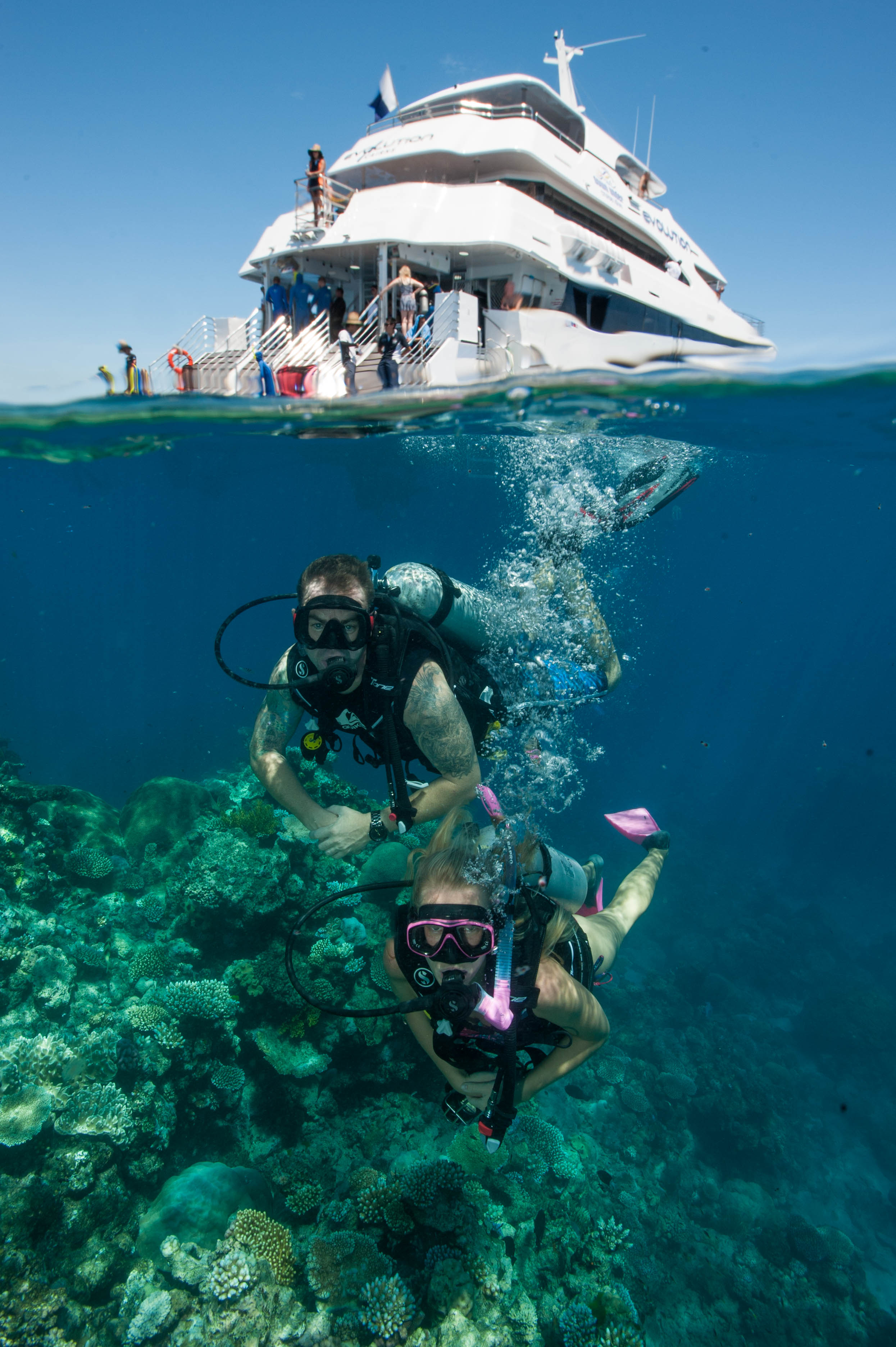 Down Under Cruise and Dive - Accommodation Sydney