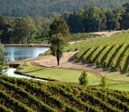 Brookhampton Estate Vineyard - Accommodation Sydney