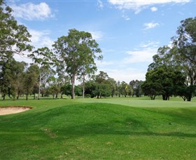 Singleton Golf Club - Accommodation Sydney