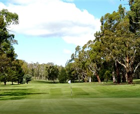 Cooma Golf Club - Accommodation Sydney