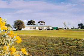Lucindale Country Club - Accommodation Sydney