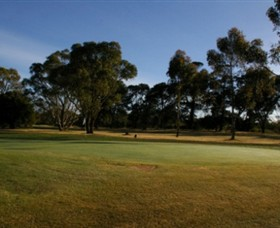 Winchelsea Golf Club - Accommodation Sydney