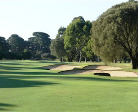 Rosebud Country Club - Accommodation Sydney
