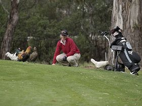 Tasmania Golf Club - The - Accommodation Sydney