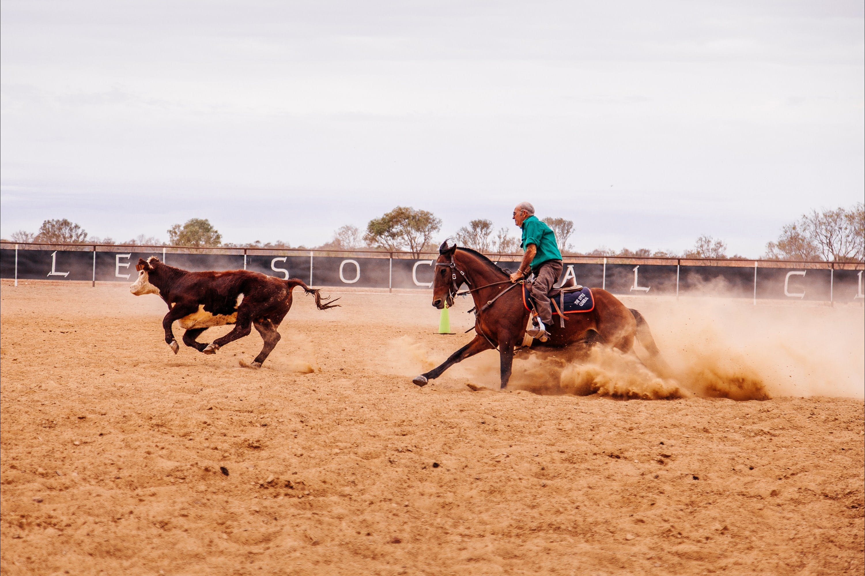 Birdsville Campdraft  Rodeo and Bronco Branding - Accommodation Sydney