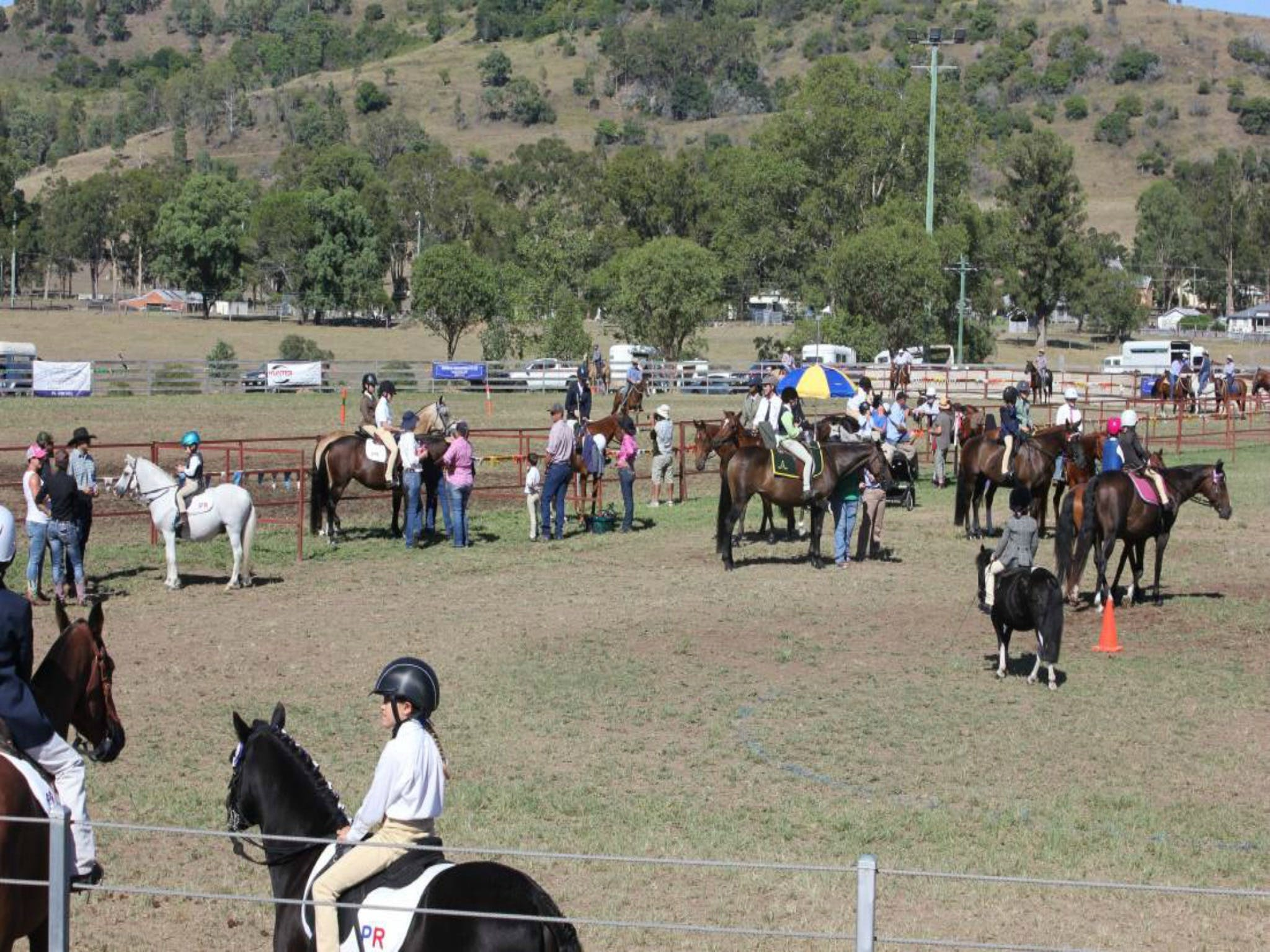 Gresford Agricultural Show - Accommodation Sydney