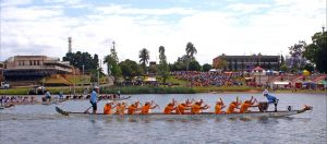Jacaranda Dragon Boat Races - Accommodation Sydney
