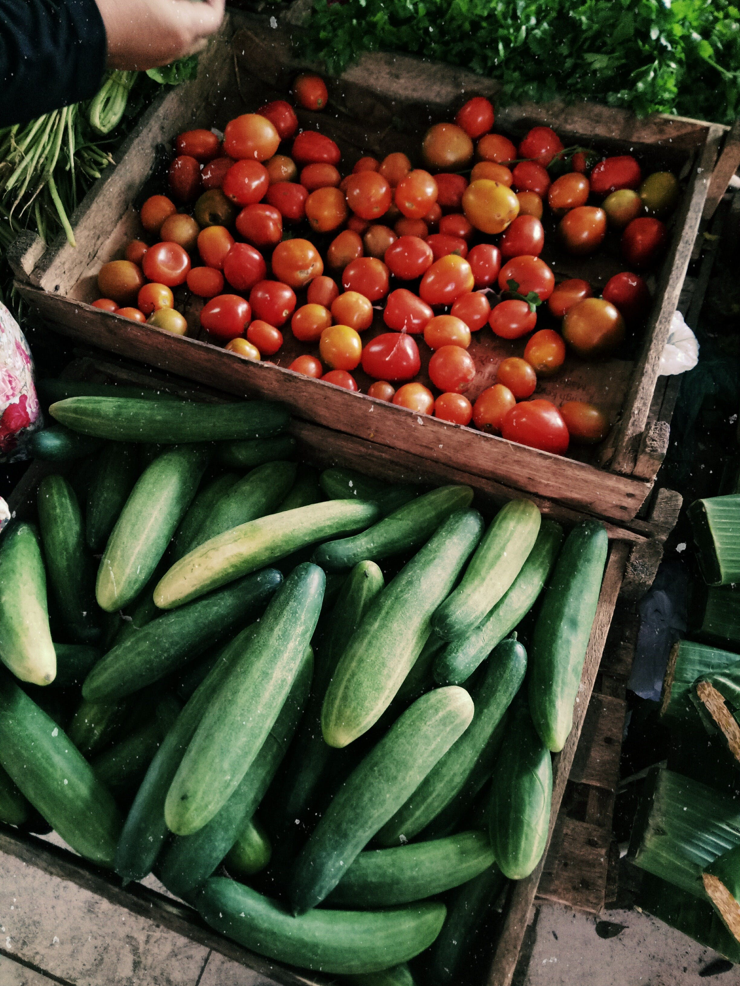 Lawrence Farmers and Community Markets - Accommodation Sydney