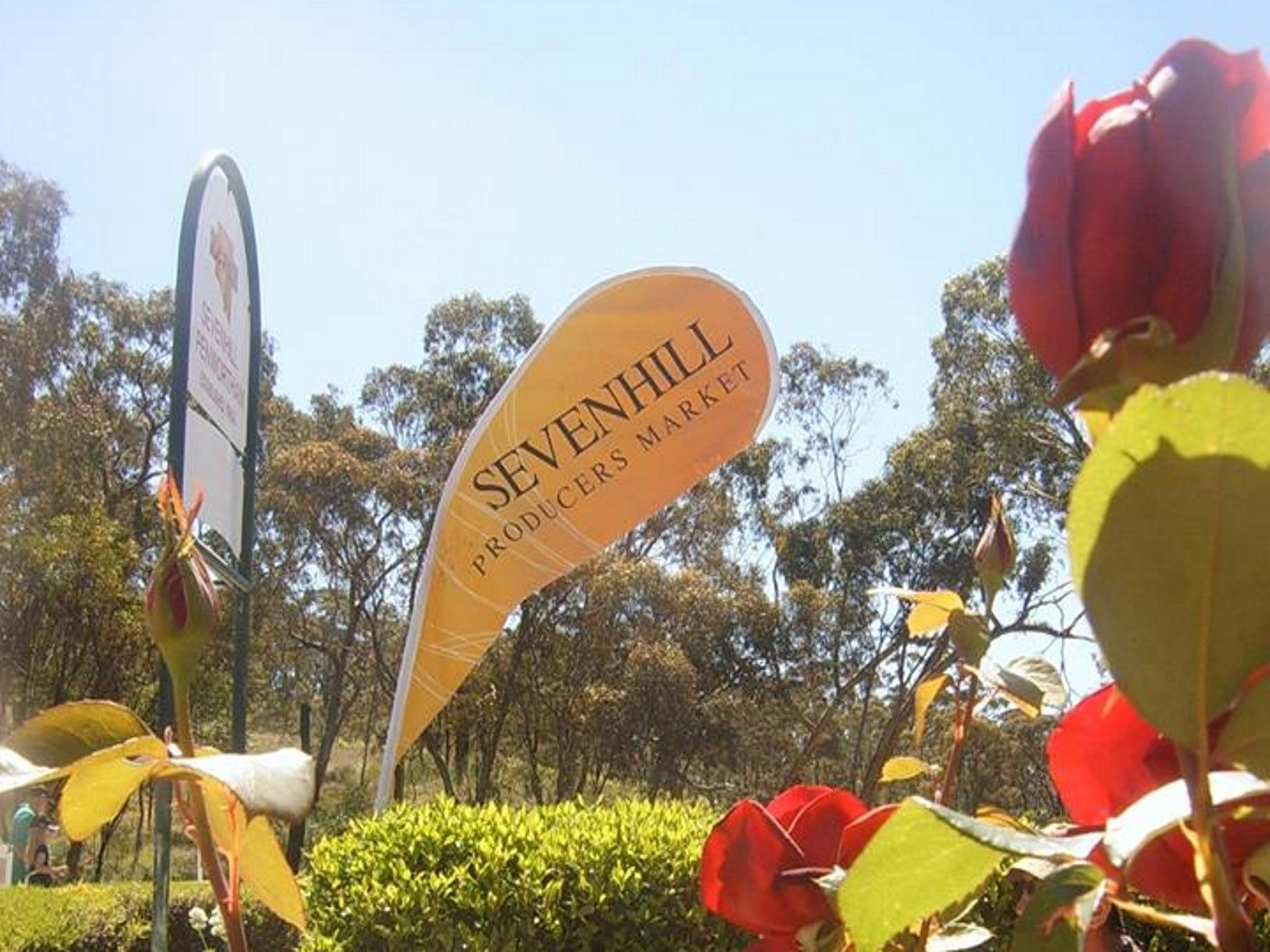 Sevenhill Producers Market - Accommodation Sydney