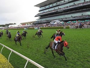 The TAB Everest The Worlds Richest Race On Turf - Accommodation Sydney