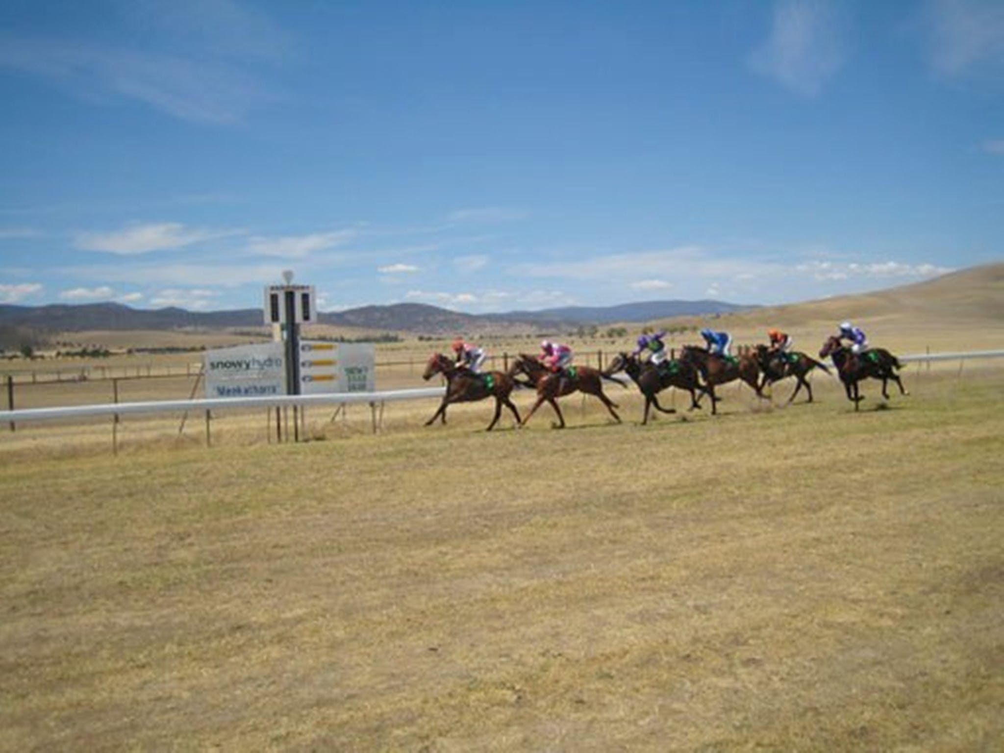 Adaminaby Cup Race Day - Accommodation Sydney