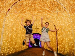Christmas Lights Spectacular New Year's Eve at Hunter Valley Gardens - Accommodation Sydney