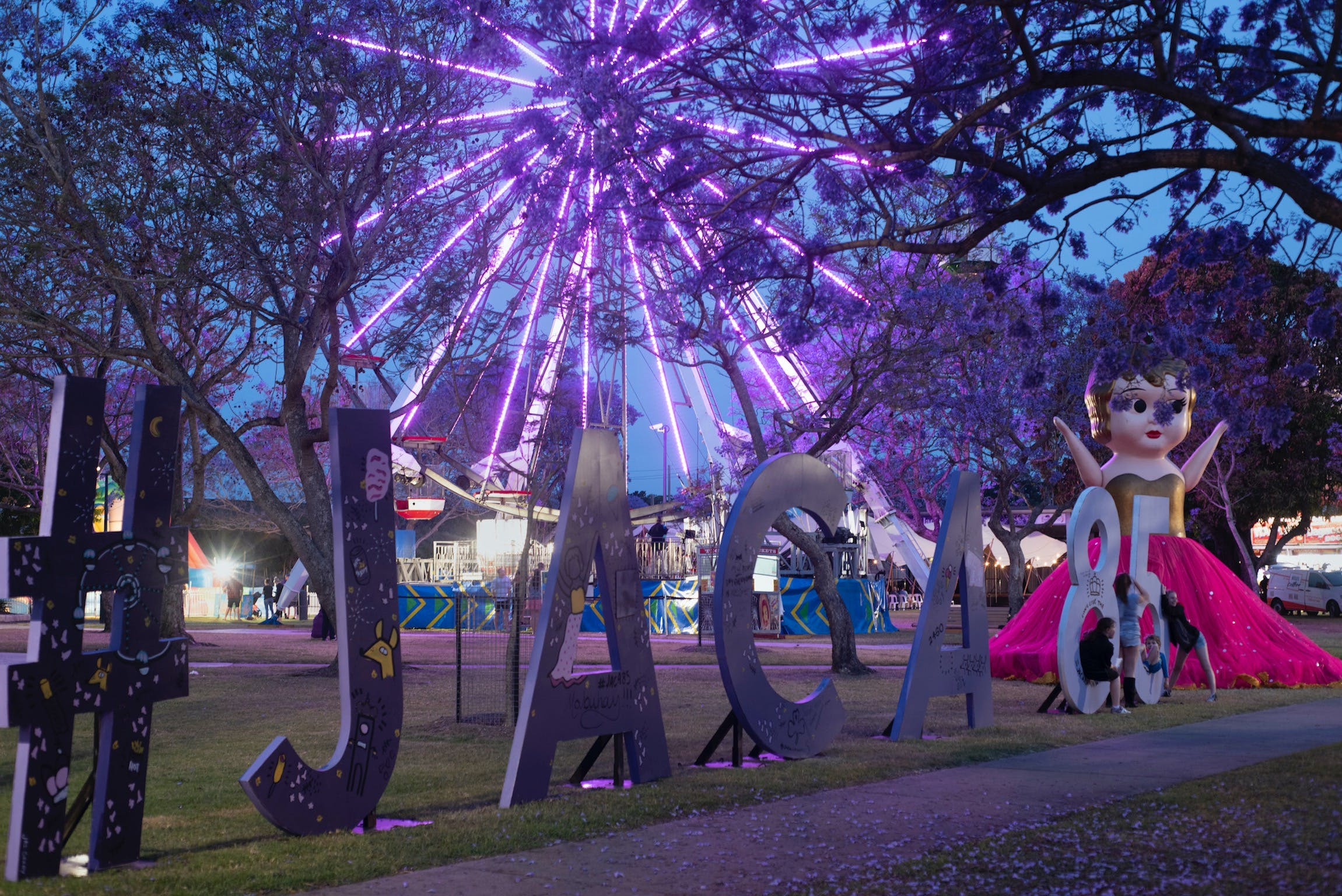 Grafton Jacaranda Festival - Accommodation Sydney