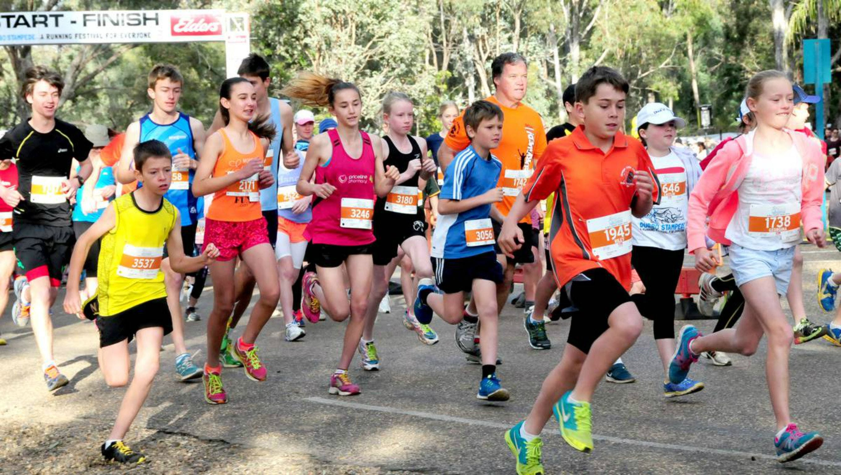 MAAS Group Dubbo Stampede Running Festival - Accommodation Sydney