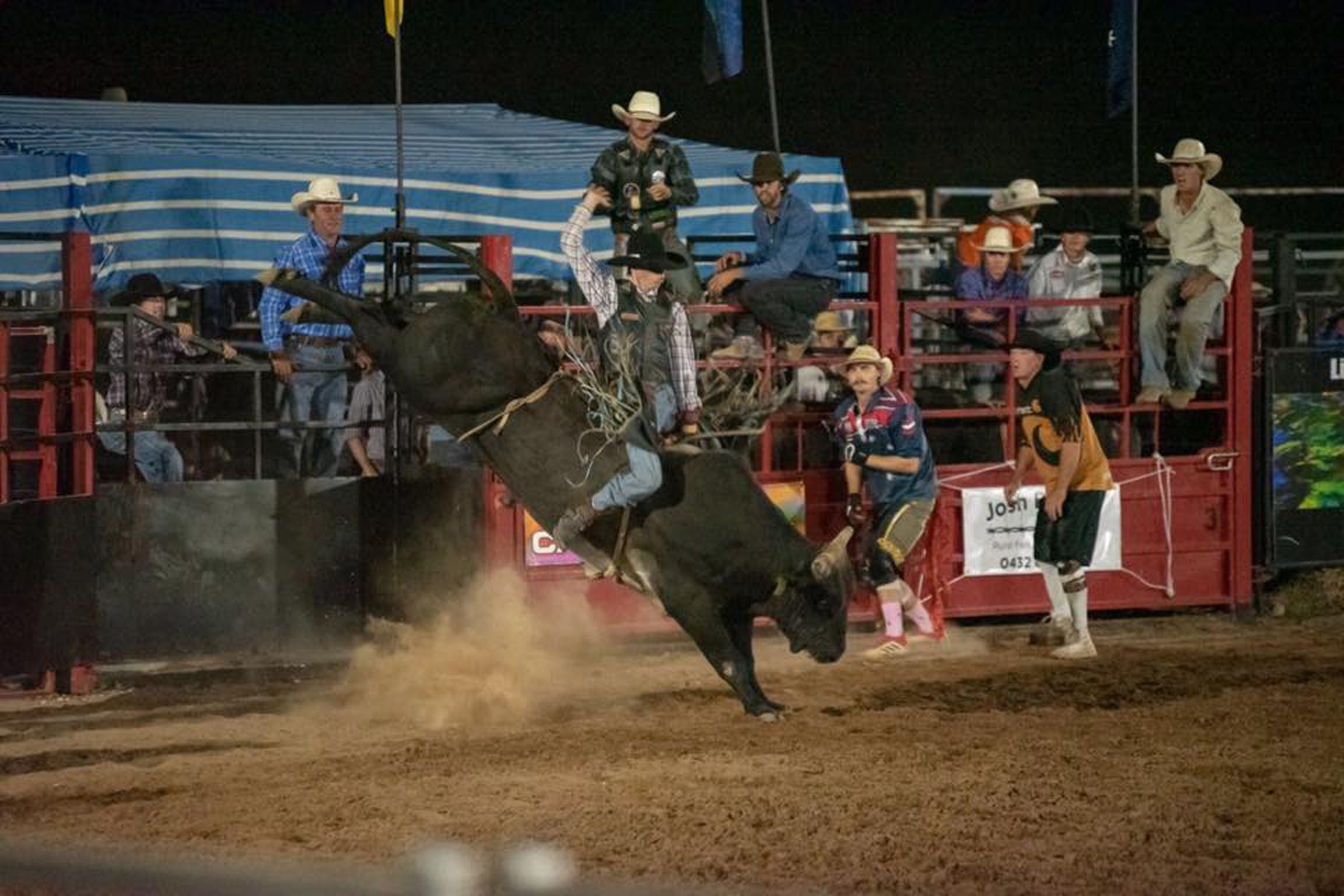 Black Opal Bull and Bronc Ride - Accommodation Sydney