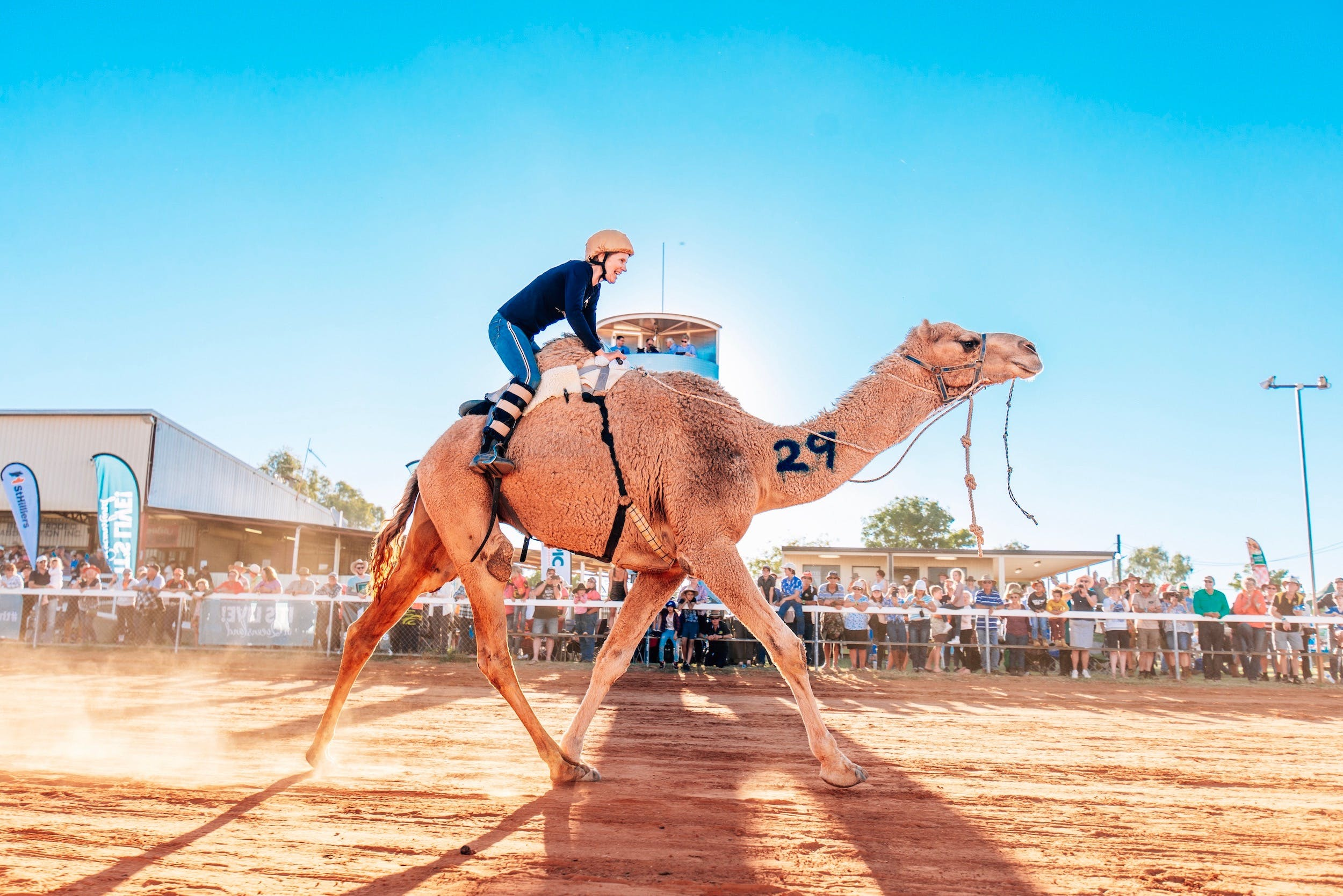 Boulia Camel Races - Accommodation Sydney