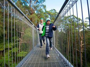Get Back to Nature these July School Holidays - Accommodation Sydney