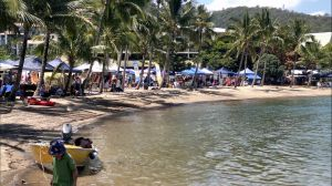 Lions Airlie Beach Community Markets - Accommodation Sydney