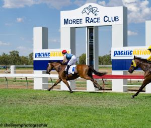Moree Race Club TAB Race Day - Accommodation Sydney