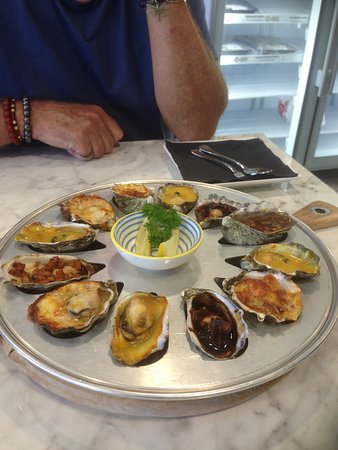 Tarkine Fresh Oysters - Accommodation Sydney