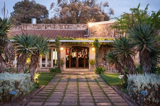 Vintner's Bar and Grill - Accommodation Sydney