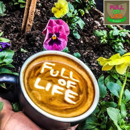 Full of Life Organics - Accommodation Sydney
